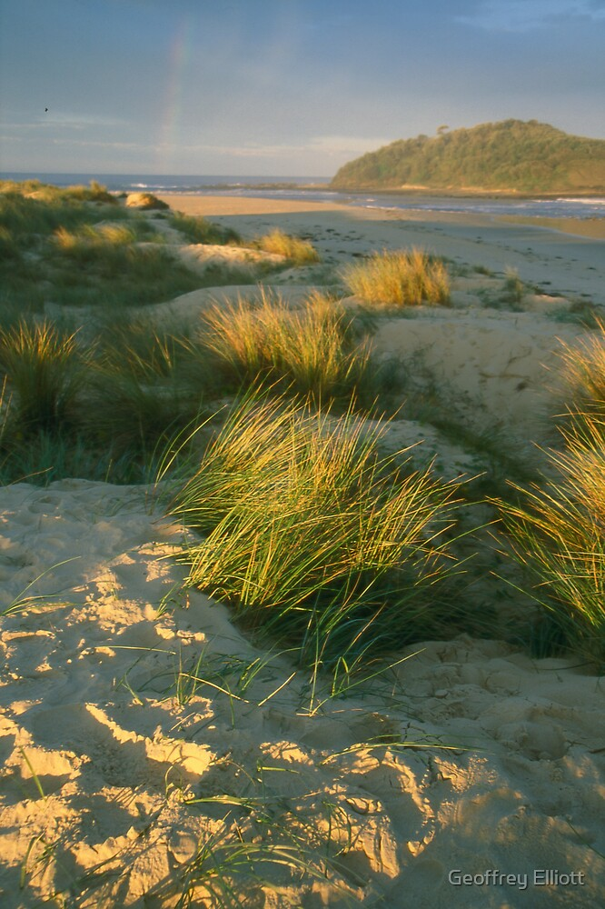 dune by Geoffrey Elliott