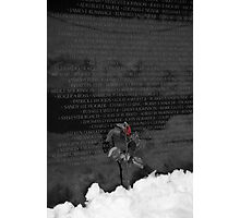 Vietnam Veterans Memorial 4 Photographic Print