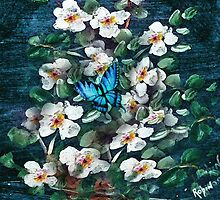 Dogwoods and Butterfly by Robin Pushe'e