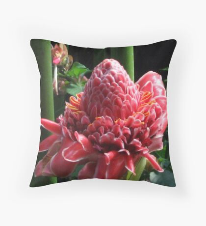 Torch Warmth Throw Pillow