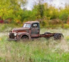Put out to Pasture by MaryTimman