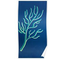 Teal and Off White Coral on Blue-Green Poster