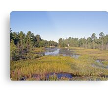 Swampscape View iN Northern Ontario Metal Print
