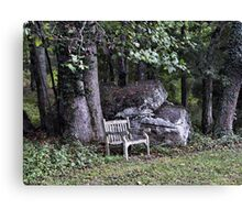 once upon a bench Canvas Print