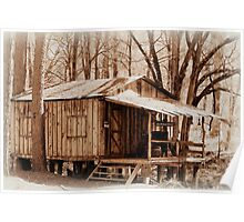 Big Cypress Cabin Poster