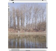 Line of Trees at Backwater iPad Case/Skin