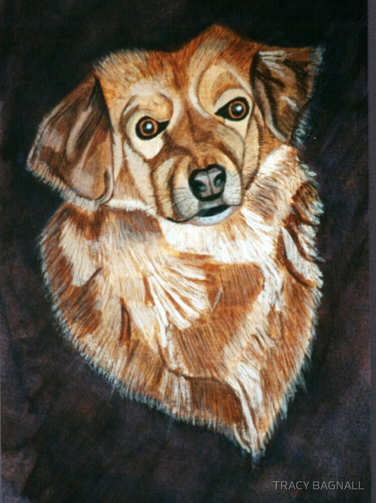 Lady - moms dog by TRACY BAGNALL