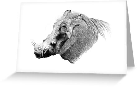 Don't Hate Me 'Cause I'm Beautiful - Warthog by Heather Ward