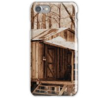 Big Cypress Cabin iPhone Case/Skin