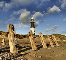 Spurn Coast by Sarah Couzens