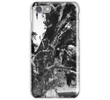 Rustic Tree iPhone Case/Skin