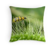 Walking on Pins and Needles Throw Pillow