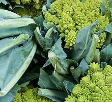 Crazy Broccoli by bethstedman