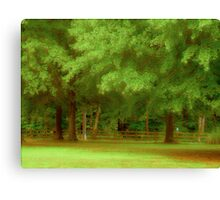 Trees, Yard And Fence Canvas Print
