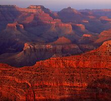Grand Canyon Sunset by Stephen Vecchiotti