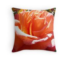 Sunkissed Rose Throw Pillow