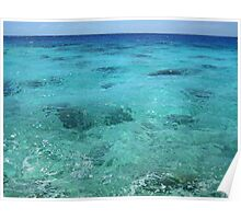 Azul Coral Reefs :) Poster