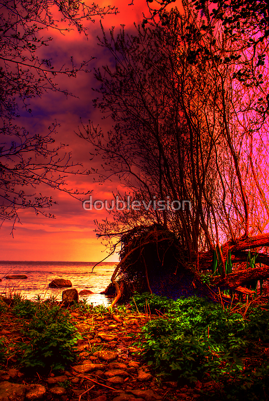 The path to the Sea. by doublevision