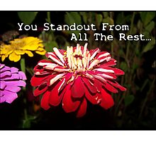 You Standout Above All The Rest.... Photographic Print