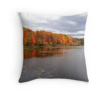 Fall, Harriman State Park, New York Throw Pillow