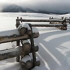 Post-Snow Snowy Posts by Hank Rodriguez
