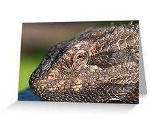 Bearded Dragon close up! Greeting Card