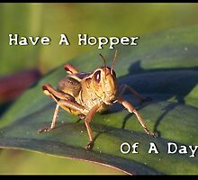 Have A Hopper Of The Day.... by Jonice