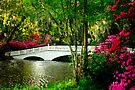 The Bridge in Spring by Mary Campbell