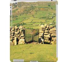 Above Llanfairfechan with Indy. iPad Case/Skin