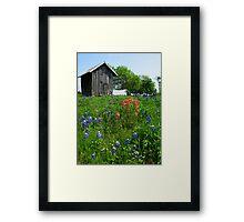Bluebonnet Outhouse © Framed Print