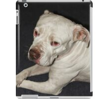 I Am  a Peaceful Pit Bull ♥ iPad Case/Skin
