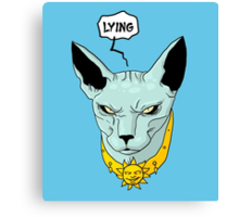 Lying Cat - Saga Canvas Print