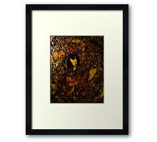 Life is coloured brown Framed Print