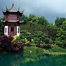 Chinese Garden by Caroline Fournier