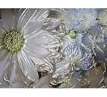 Under Plastic Photographic Print