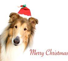 Collie Santa Christmas Card by Jan  Wall