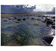Seaweed Ripples Poster