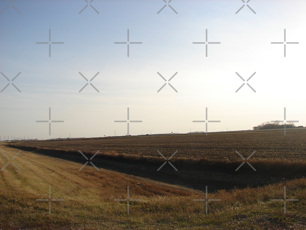 A Fall Field by Diane Petker