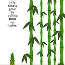 Bamboo by kieutiepie