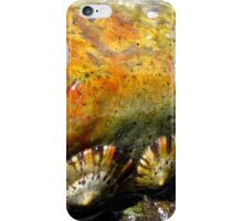Colours of Rock and Shells iPhone Case/Skin