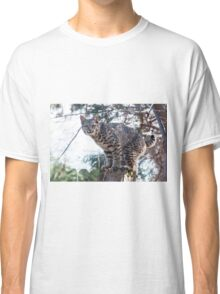 Grumpy on the fence Classic T-Shirt