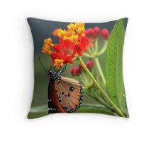 Rishikesh butterfly Throw Pillow