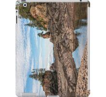 Baxter Habour iPad Case/Skin