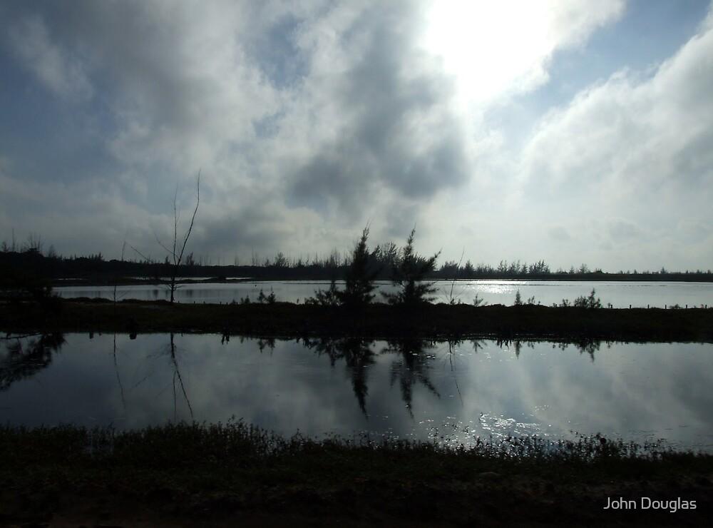 Wetlands by John Douglas