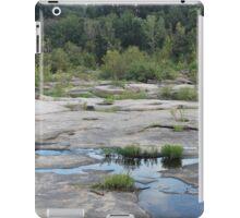 Belle Isle iPad Case/Skin