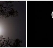 Many Moons Ago by Jason Asher