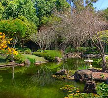 Japanese Garden by Jason Asher