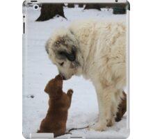 "Tucker  "" I Love You Goliath""- Solar Babies iPad Case/Skin"