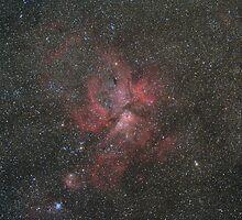 The Great Carina Nebula by Steve Arkleton