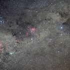Milky Way in Crux and Carina by Steve Arkleton